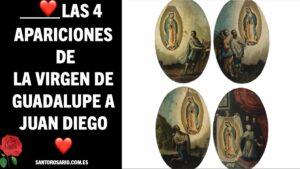 Las 4 apariciones de la Virgen de Guadalupe a Juan Diego